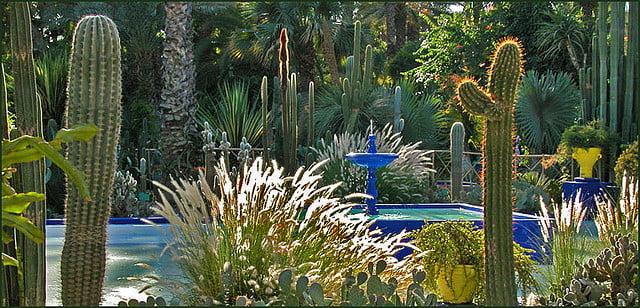 Jardin de la villa Majorelle