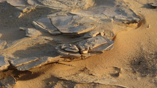 vestiges archéologiques Tassili Najjer
