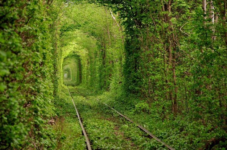 Tunnel of love - Tunnel de l'amour Klevan, Ukraine