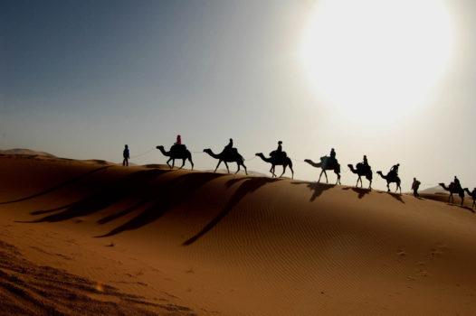 afrique saharienne