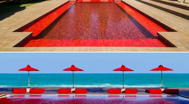 piscine-rouge-tendance-hotel