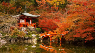 japon-automne