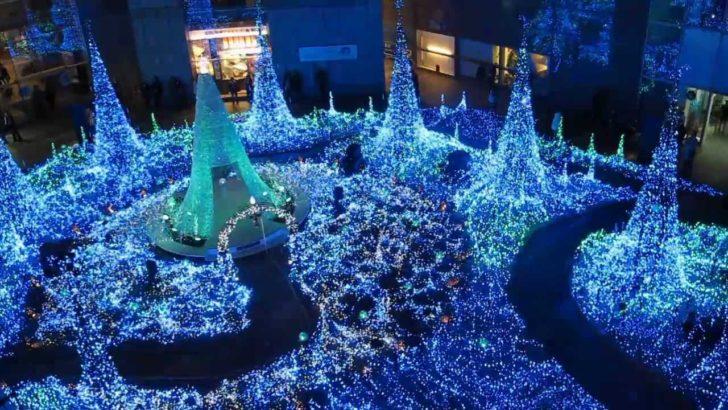Japon, Tokyo, illuminations Noël
