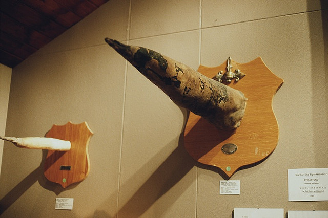 musee-phallus Islande