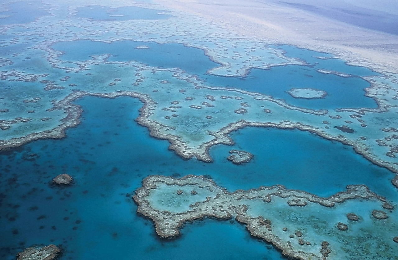 Grande barrière corail australie
