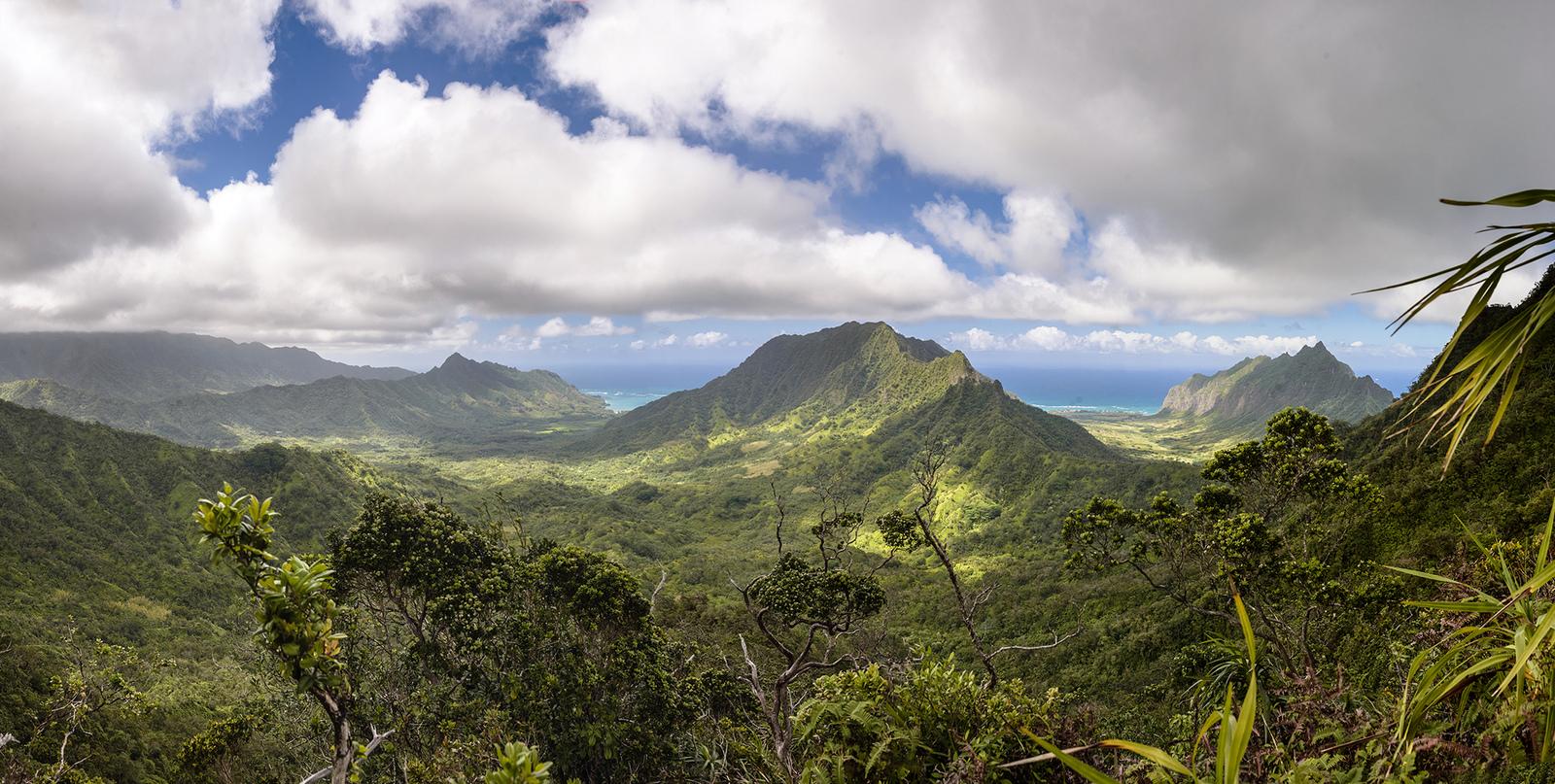 hawaï Manamana