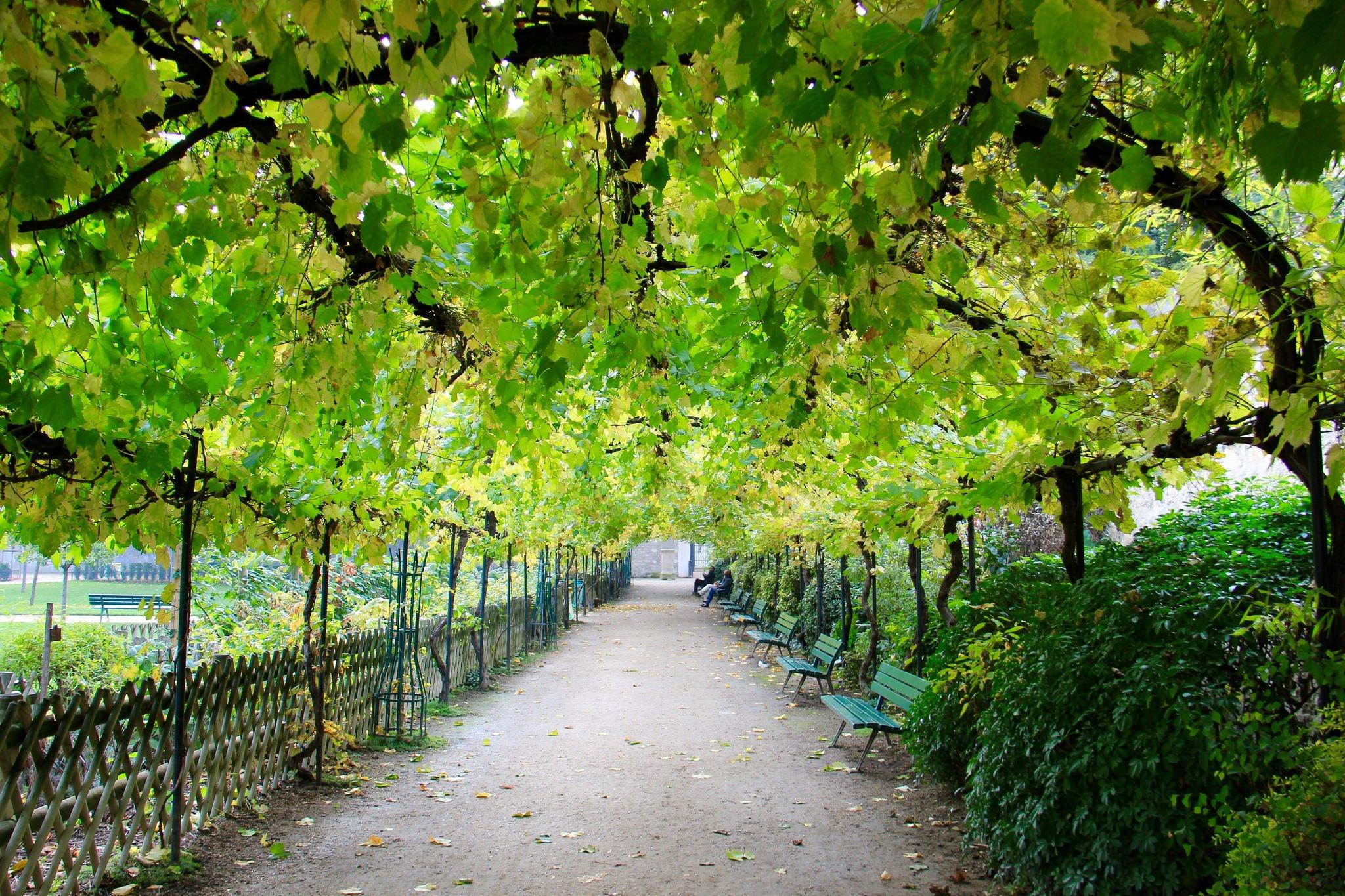 Jardin catherine Labouré Paris