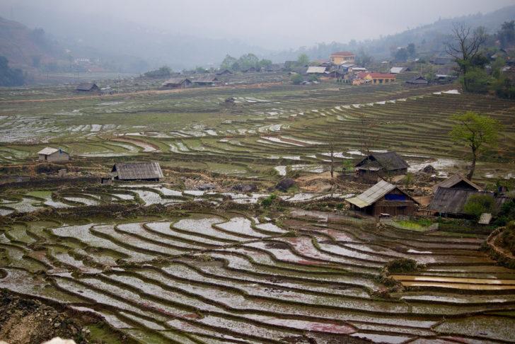 Les rizières en escalier, vers Sapa