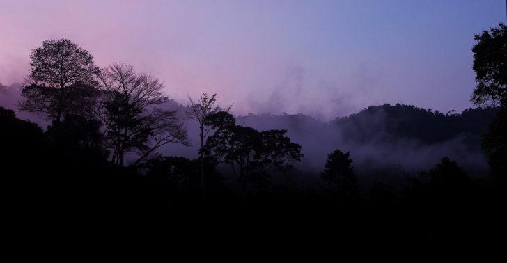 Flickr / Green Baron Pro