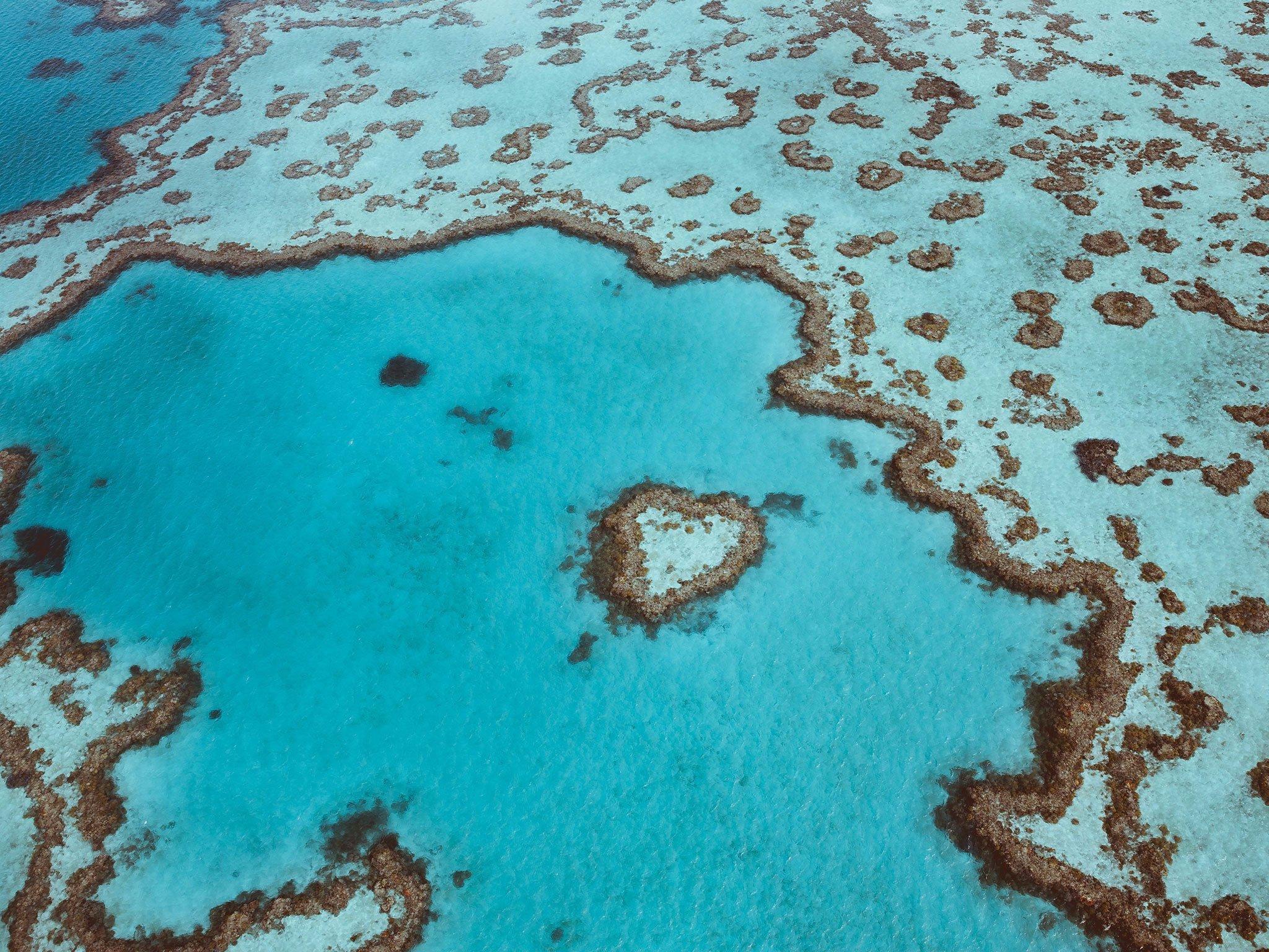 heart reef Australie,