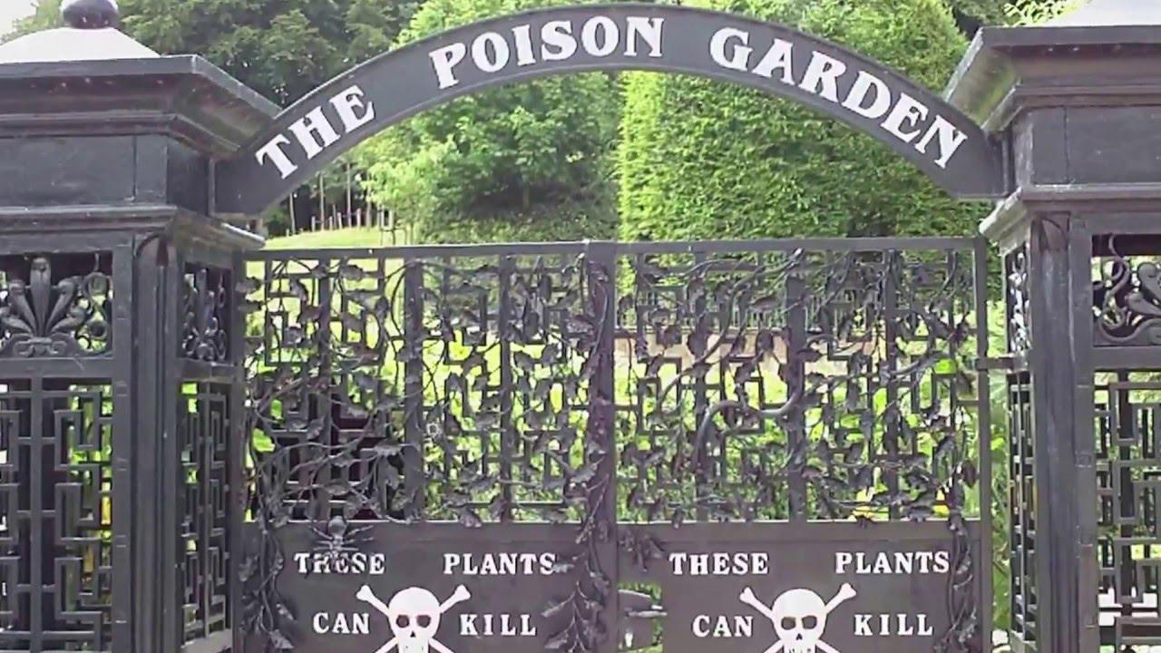 Alnwick Gardens, Poison garden