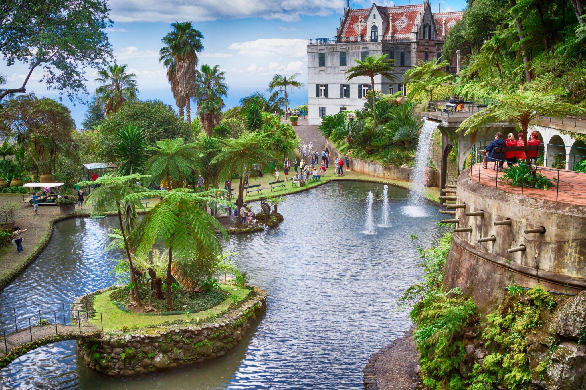 Jardin tropical à Funchal