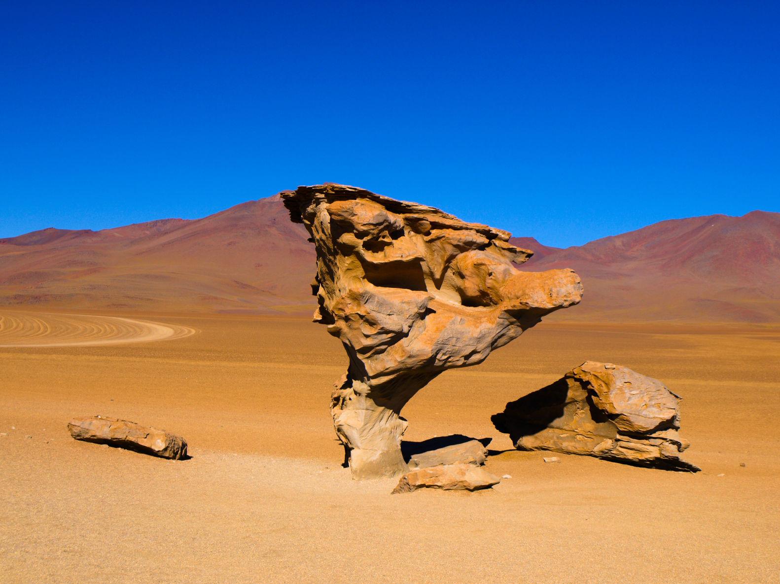 Arbre de pierre, Bolivie