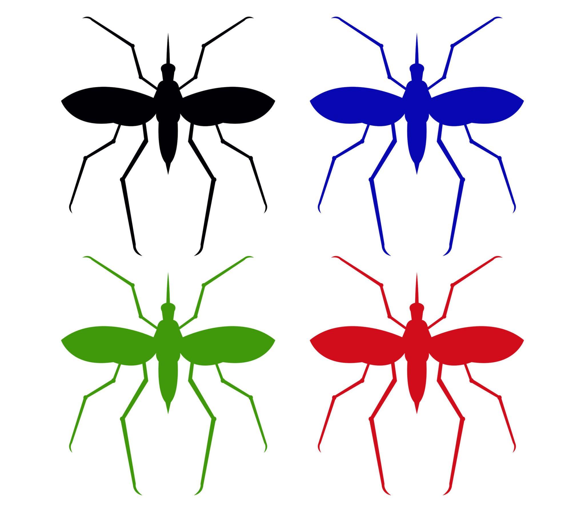 Citonnelle contre les moustiques