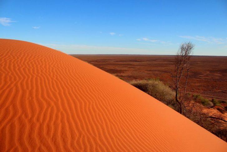 Le désert de Simpson en Australie