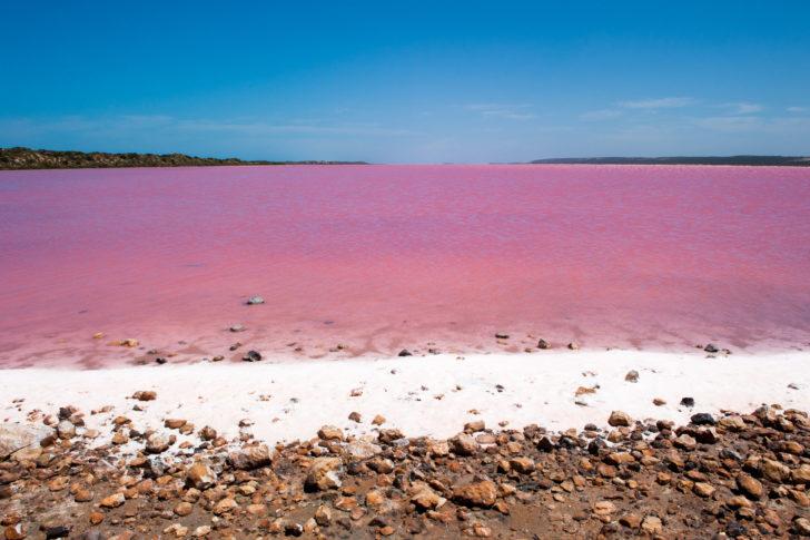 Les lacs roses en Australie