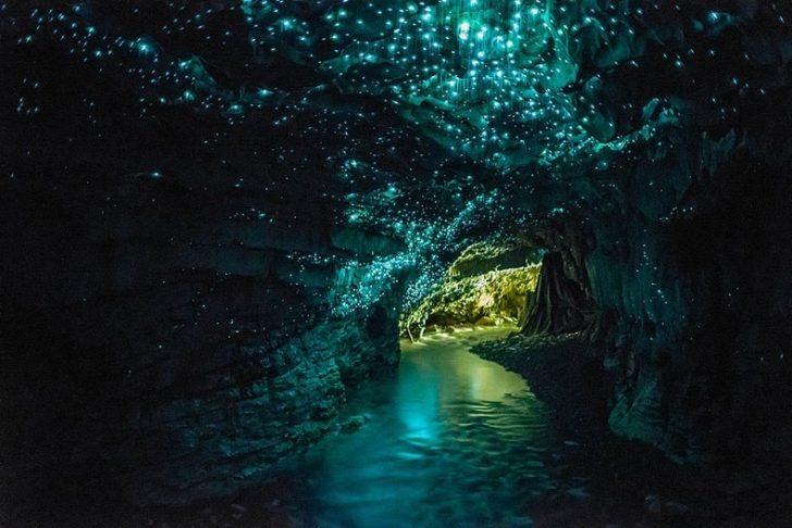 Grotte Waitomo de vers luisants en Nouvelle-Zélande