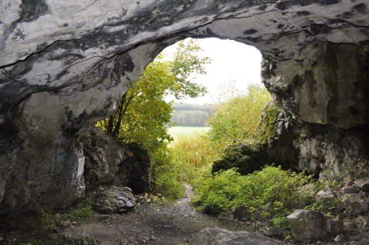 Vue intérieure de la cave de Bockstein