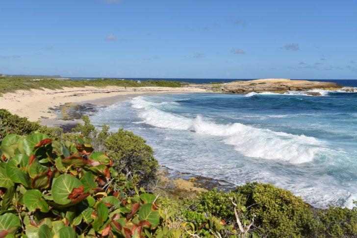 La Pointe des Châteaux en Guadeloupe