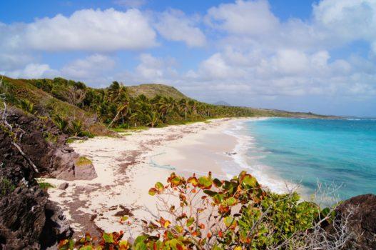 Anse Grosse Roche en Martinique