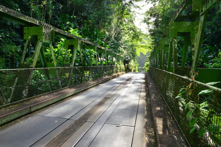 Pont de Grand Rivière en Martinique
