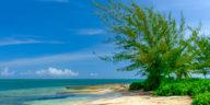 Starfish Point Beach aux Îles Caïmans