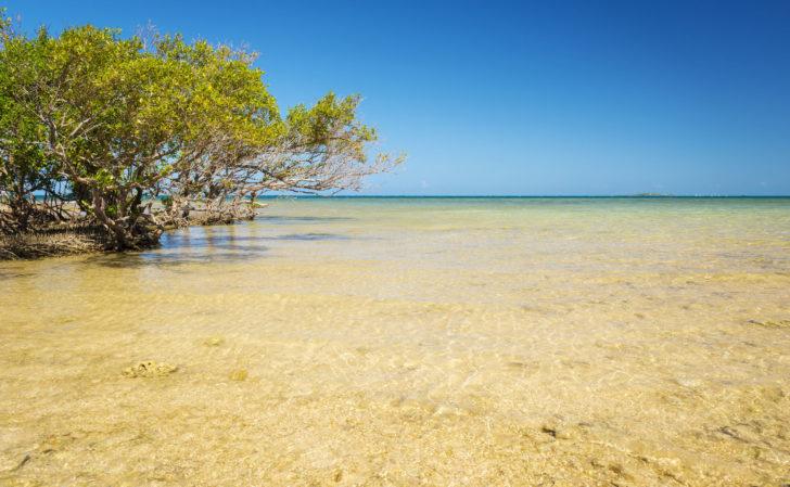 Îlot Canard à Nouméa