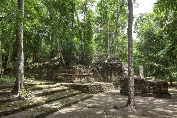 Calakmul au Mexique