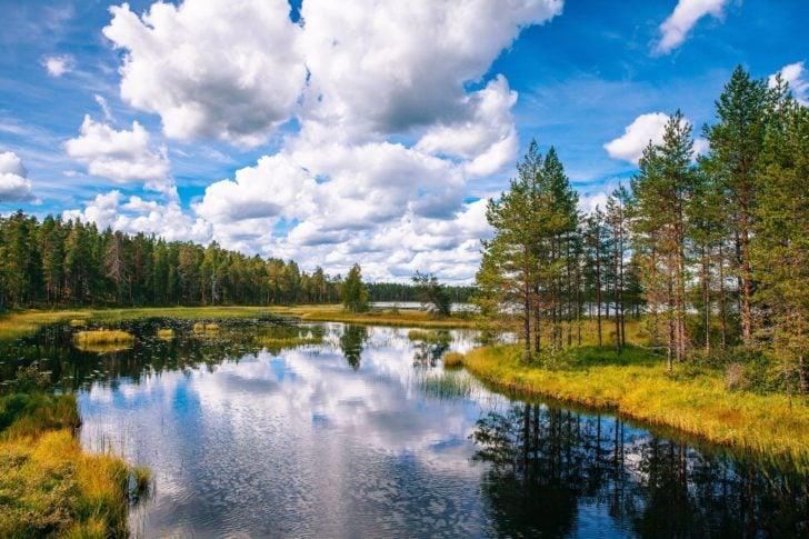 L'été en Laponie