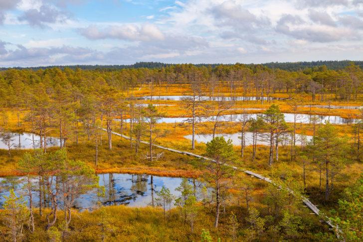 Parc de Lahemaa en Estonie, Pays baltes