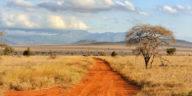 La Tanzanie, destination d'hiver