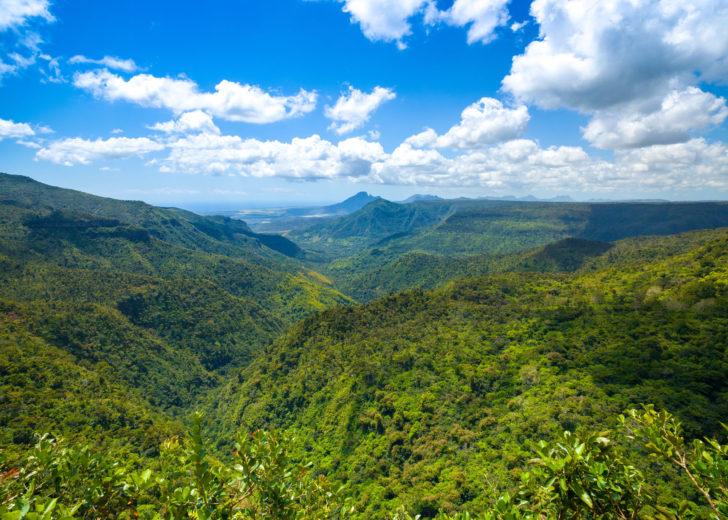 Parc national des gorges de la Rivière Noire