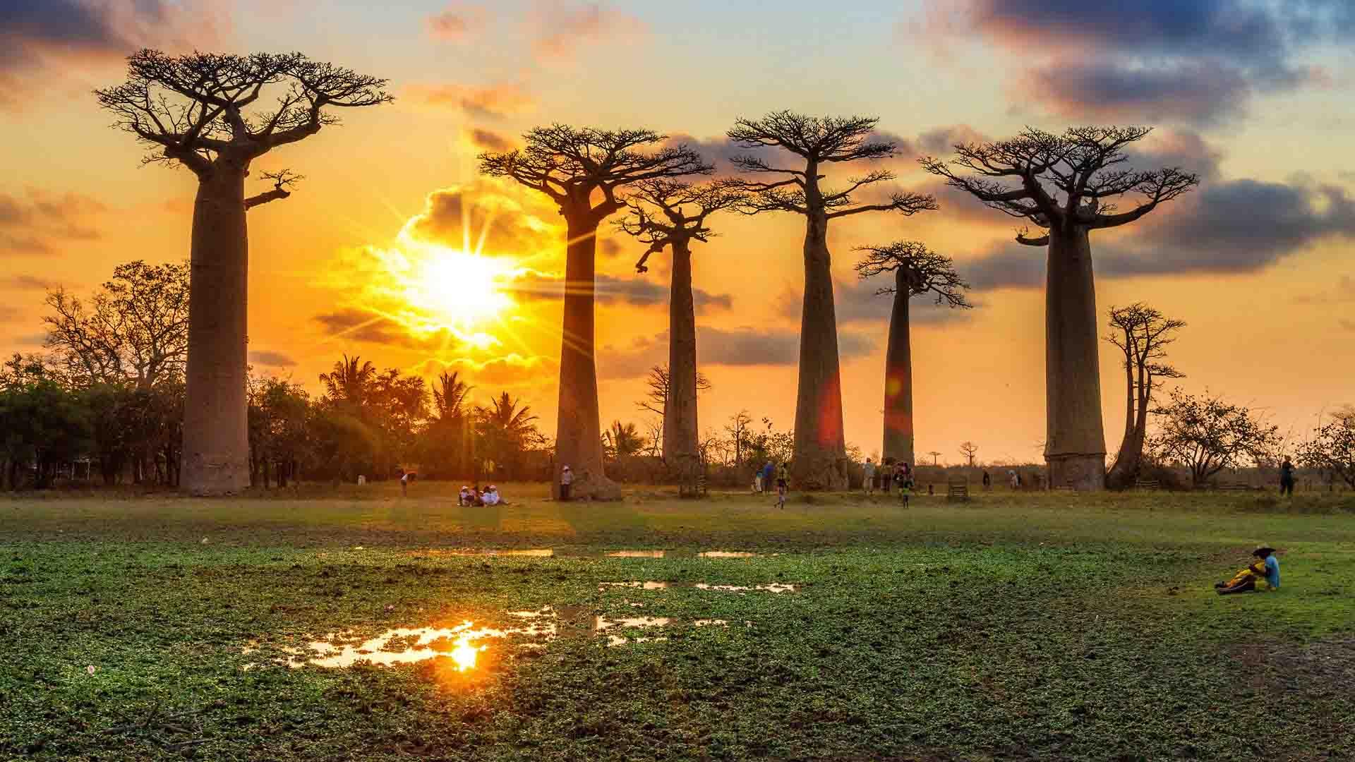 safari de luxe madagascar